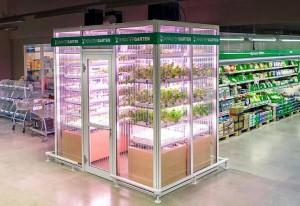 InFarm Metro Berlino agricoltura in store