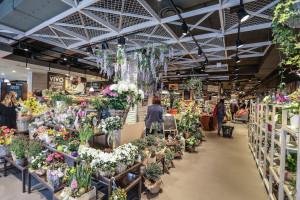 carreefour bezzi piante e fiori