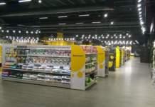 Store Arcaplanet San Giuliano