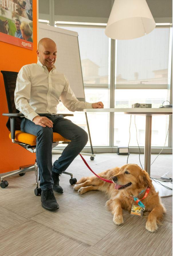 Pets at Work Alliance Purina presso Zoetis a Roma